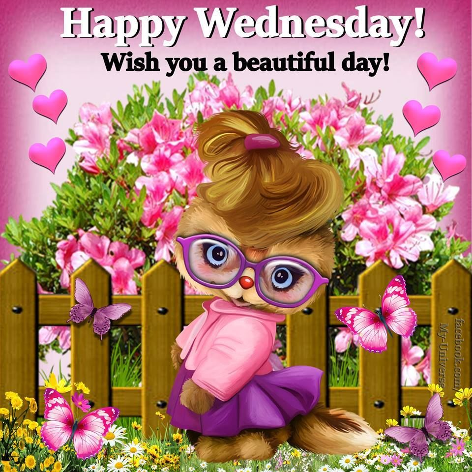 Wish You A Beautiful Day! Happy Wednesday! Pictures