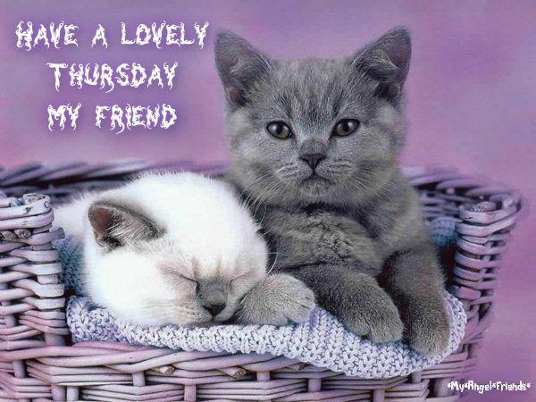 Have A Lovely Thursday My Friend