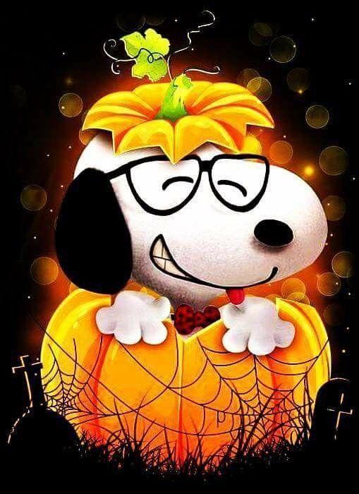 Snoopy Inside Pumpkin
