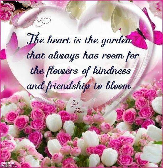 The heart is the garden that always has room for the flowers of kindness
