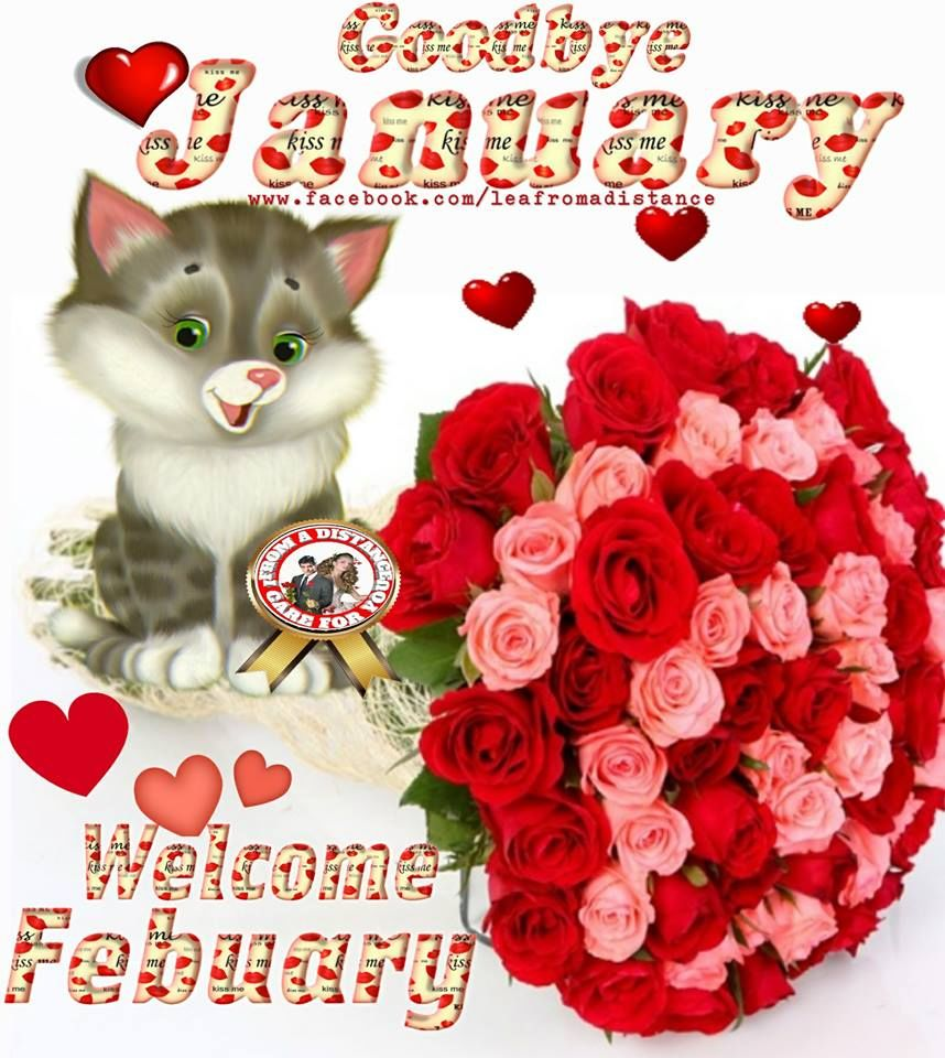 Bouquet Bye January Welcome February