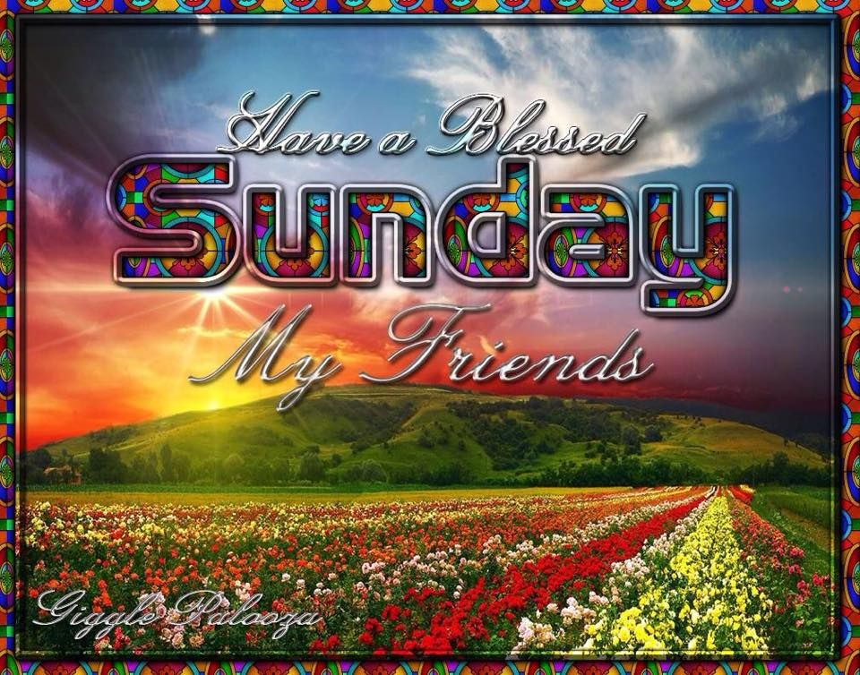 Blessed Sunday Image For Friends