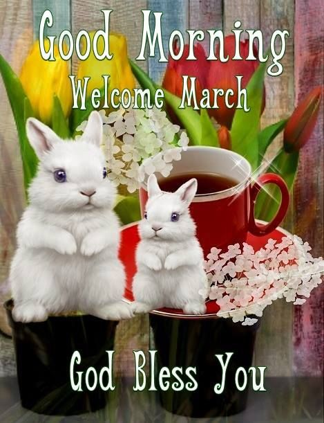 Good Morning Welcome March Bunny Image