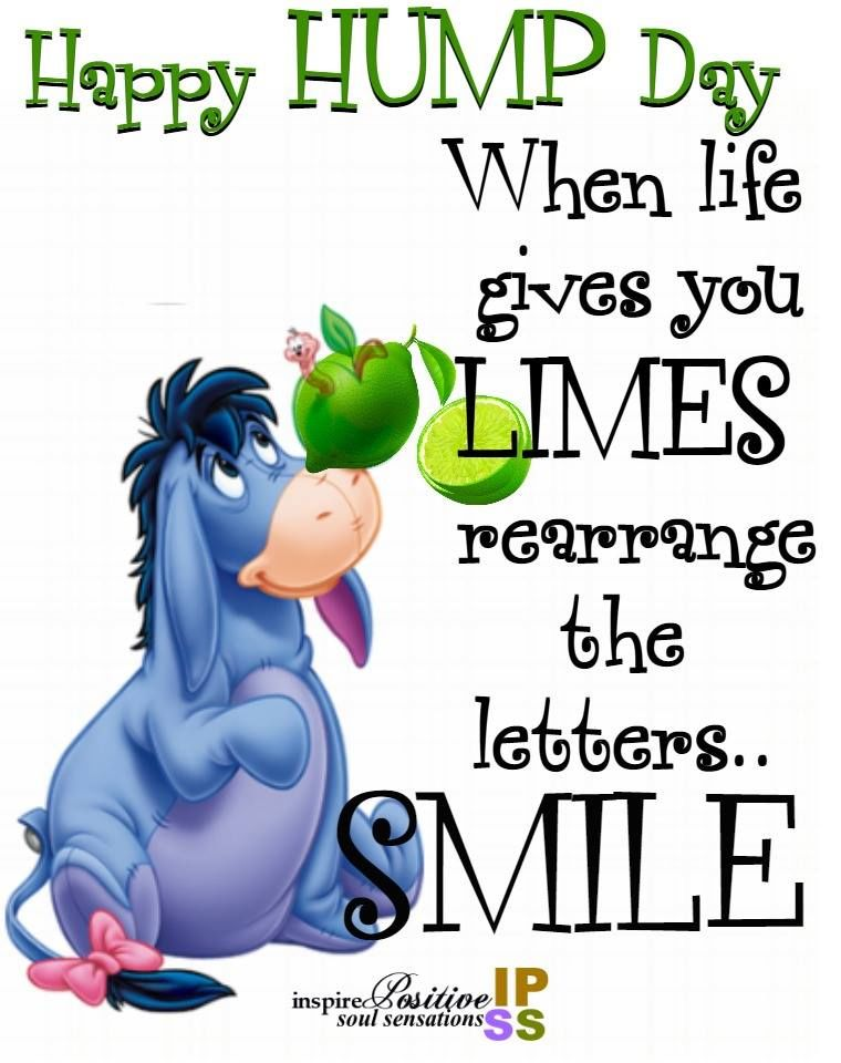 When life gives you limes, rearrange the letters...smile