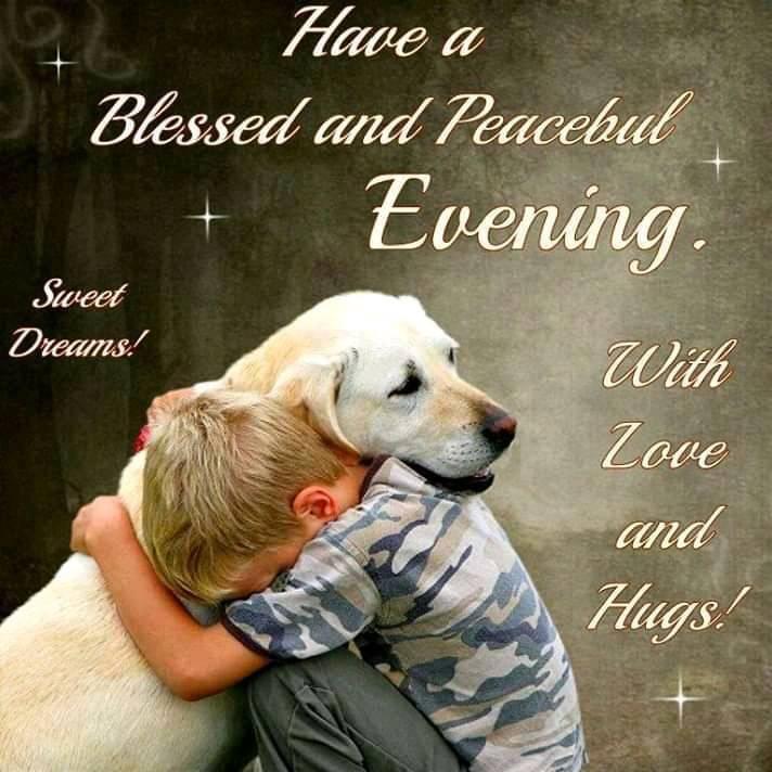 Boy Hugging Dog Peaceful Evening