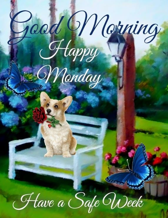 381017-Safe-Week-Good-Morning-Happy-Monday-Quote.jpg