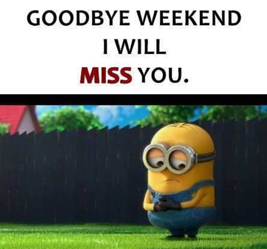 Goodbye Weekend, I Will Miss You