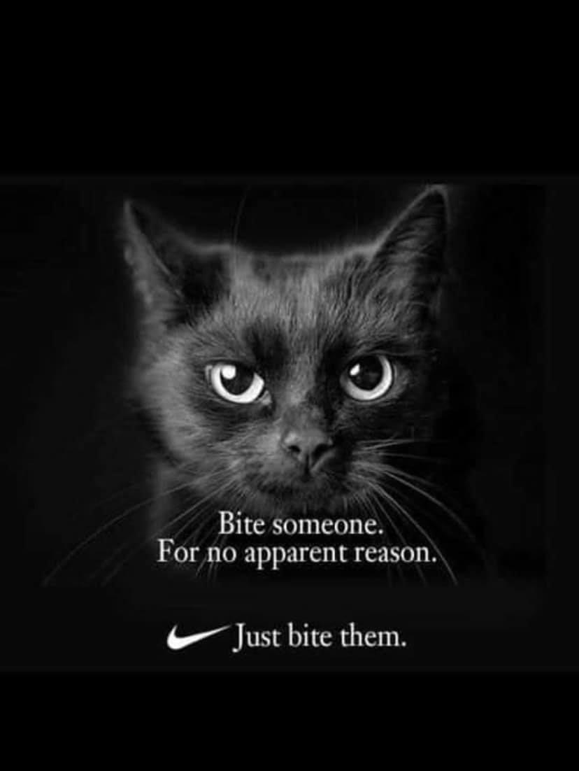 Just bite them