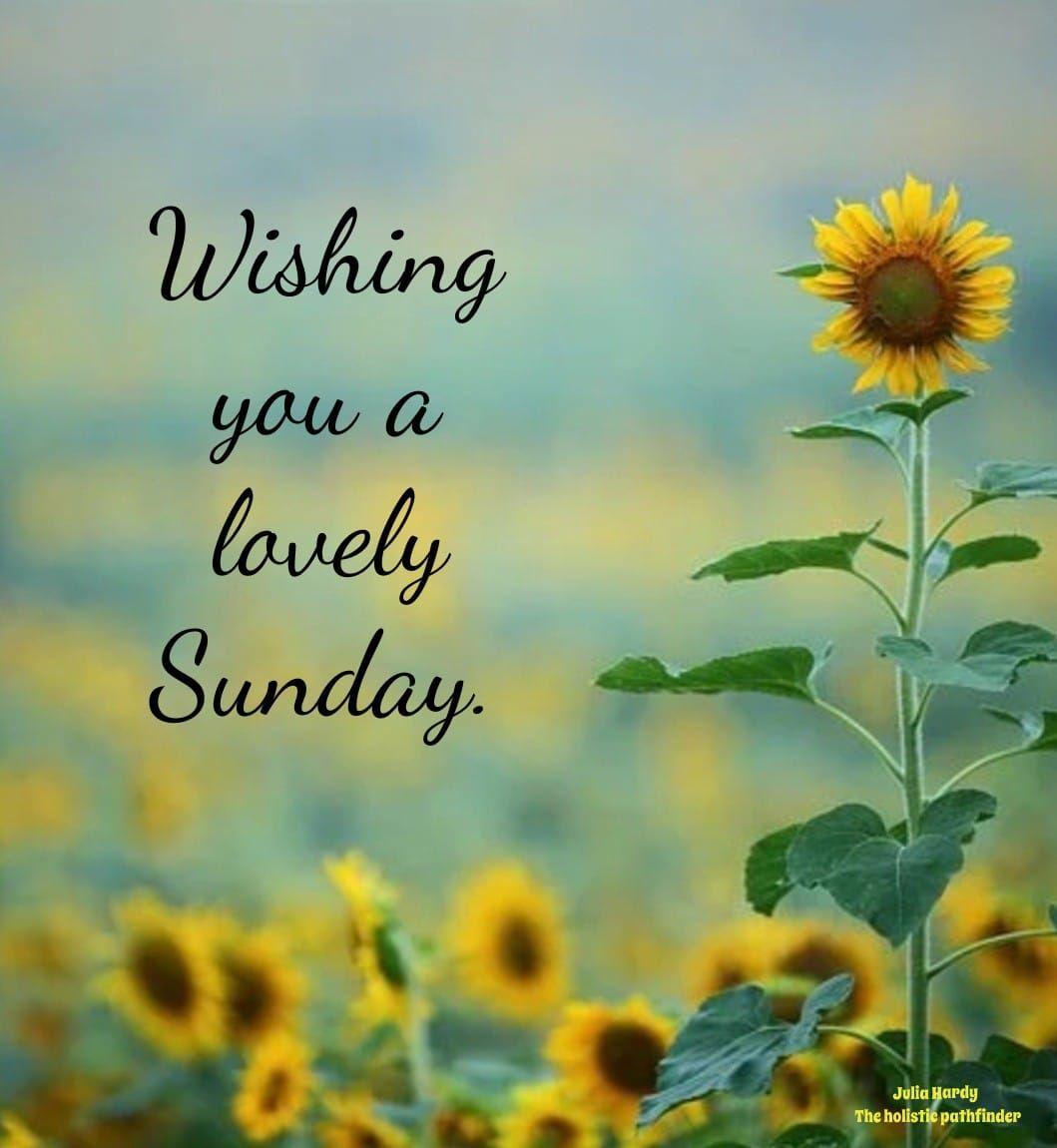 Wishing you a lovely Sunday