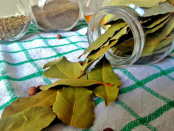 Stick A Few Of These Leaves In Every Corner Of Your Home