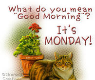 Image result for good morning, it's monday again