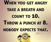 Funny Minion Quote About Anger