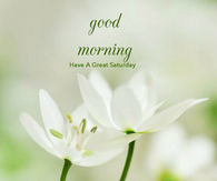 Good Morning Saturday Images Pictures Photos Images And Pics For