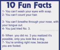 Fun Facts Pictu... Quotes Funny Jokes For Kids