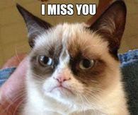 Funny Missing You Quotes Pictures Photos Images And Pics For
