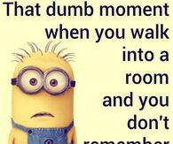 Dumb Moment Minion Quote