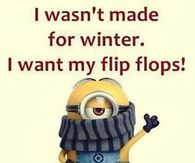 Funny Winter Quotes Pictures Photos Images And Pics For Facebook Tumblr Pinterest And Twitter During christmas, happiness takes over like the snows in the winter. funny winter quotes pictures photos