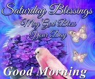 Saturday Good Morning Quotes Pictures Photos Images And Pics For