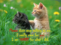 I Really Care I Am Sorry For What I Did