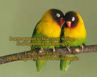 Please Forgive Me Lets Be Best Friends Again