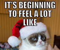 Christmas Memes Pictures, Photos, Images, and Pics for Facebook ...