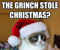 Grumpy Cat Memes Pictures Photos Images And Pics For Facebook