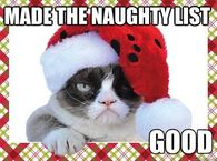 Funny Christmas Quotes Sayings Pictures, Photos, Images, and