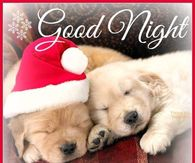 Christmas Goodnight Quotes Pictures, Photos, Images, and Pics for ...