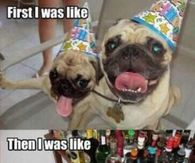 Funny Happy Birthday Quotes Pictures, Photos, Images, and
