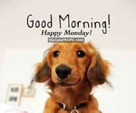 Good morning happy monday pictures photos images and pics for dreamer voltagebd Gallery