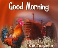 Jesus Good Morning Quotes Pictures Photos Images And Pics For