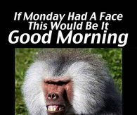 Funny Monday Morning Quotes Pictures Photos Images And Pics For