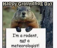 Groundhog Day Quotes Pictures, Photos, Images, and Pics for