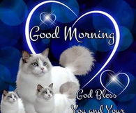 Good Morning Blessings Pictures Photos Images And Pics For