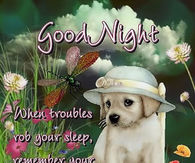 Cute Goodnight Quotes Pictures Photos Images And Pics For