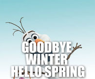 olaf spring quotes pictures photos images and pics for facebook