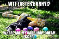 Funny Meme For Easter : Funny happy easter memes easter memes happy easter