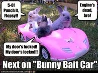 Funny Meme For Easter : Easter sunday is on april fool s day imgflip