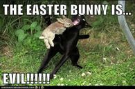 Funny Meme For Easter : Happy easter funny meme happy valentines day