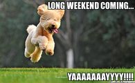 251883 Long Weekend Coming....yaaaaaayyyyy funny weekend memes pictures, photos, images, and pics for