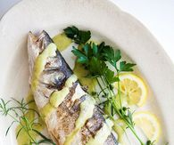 Branzino Pictures, Photos, Images, and Pics for Facebook ...
