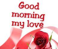 good morning my darling quotes