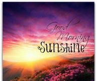 Good Morning Sunshine Quotes Pictures Photos Images And Pics For