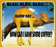 Humped day