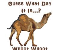 271811 Guess What Day It Is Whoot Whoot hump day camel pictures, photos, images, and pics for facebook