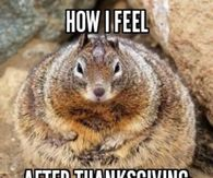 285702 How I Feel After Thanksgiving thanksgiving memes pictures, photos, images, and pics for facebook