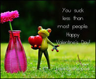 You Suck Less Than Most People, Happy Valentine's Day