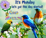Monday greeting pictures photos images and pics for facebook its monday good morning m4hsunfo