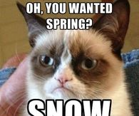 Spring Meme Pictures Photos Images And Pics For Facebook