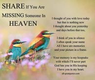 Quotes About Missing Someone Pictures Photos Images And Pics For